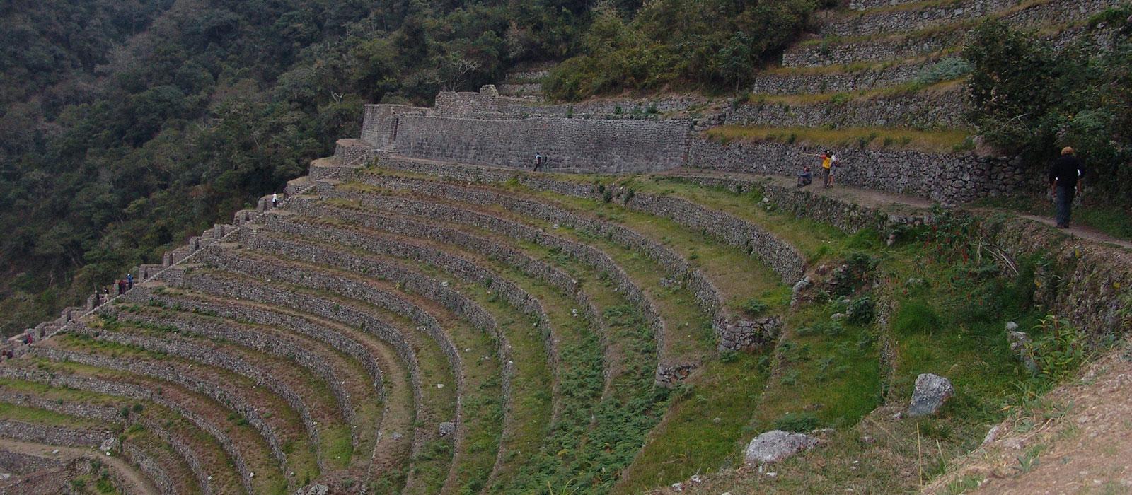 Camino Inca 4 Dias / 3 Noches - Wiñayhuayna