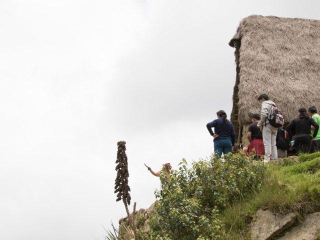 Ancascocha Camino Inca + Machu Picchu  7 Dias